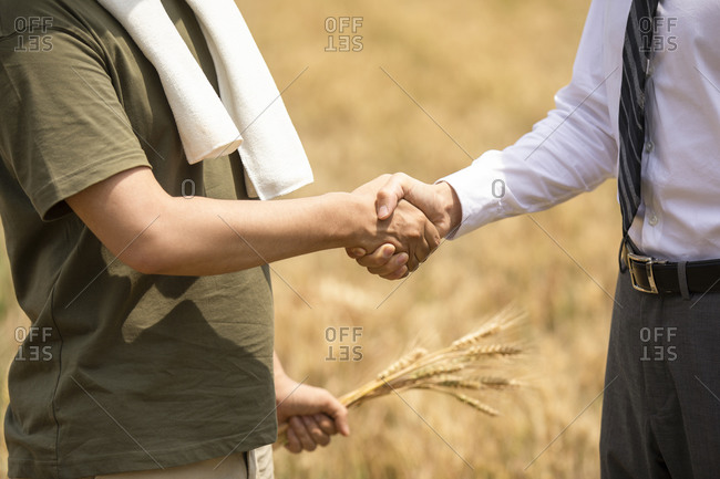 Farmer shaking hands with businessman in wheat field