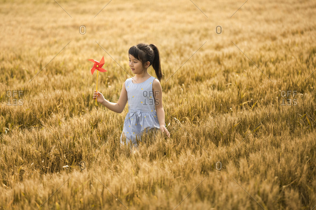 Little girl playing with paper windmill in wheat field