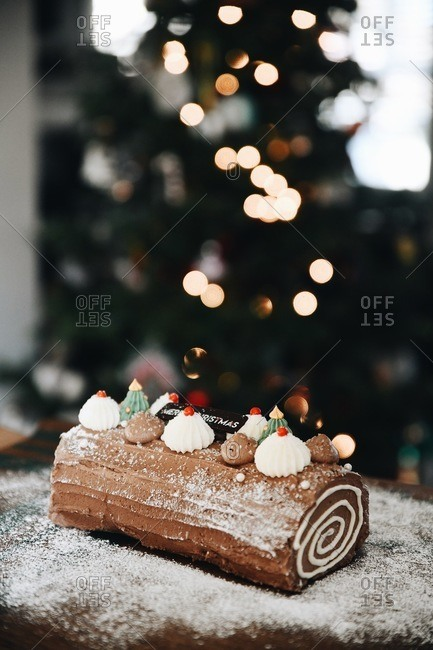 Chocolate holiday yule log dessert on table with Christmas tree in background