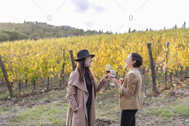 Cheerful female colleagues toasting wineglass while standing in vineyard during autumn