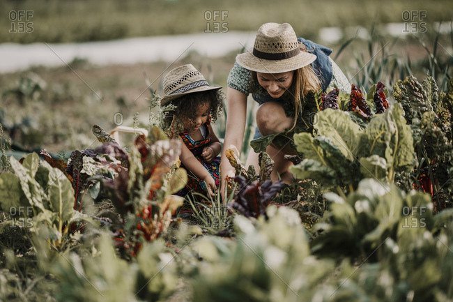 Female farm worker working while crouching by daughter at farm