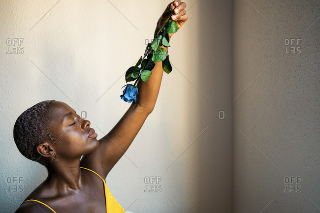 Female hipster with eyes closed holding blue rose against wall at home