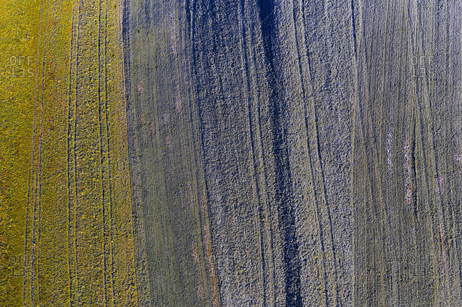 Drone view of frosted field in winter