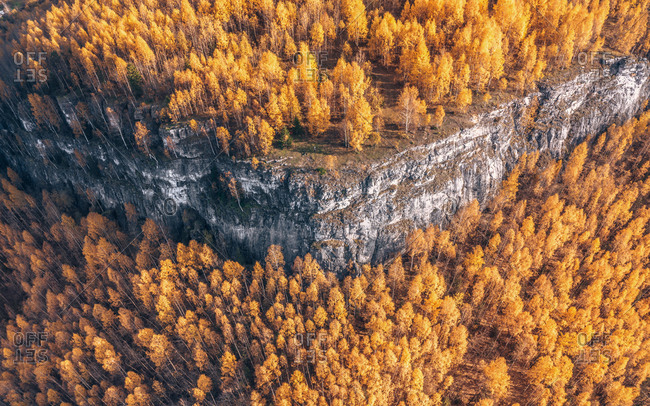 Aerial view of the treetops of golden forest on the mount in autumn season, Gubaha, Perm Krai, Russia