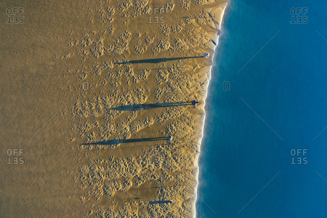 Aerial view of fishermen fishing on the shore during sunrise time, when the sand is gold and the river waters are smooth as silk, in Ria de Aveiro, Torreira, Murtosa, Aveiro, Portugal