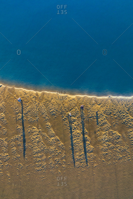 Aerial view of fishermen fishing on the shore during sunrise time, when the sand is gold and the river waters are smooth as silk, in Ria de , Murtosa, Aveiro, Portugal