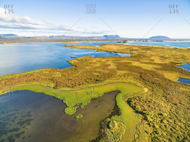 Aerial view of the edge of a green peninsula in a lake, lake Myvatn, Iceland