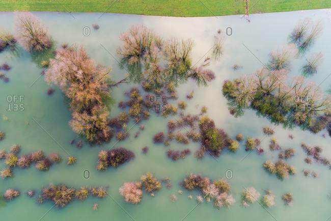 Aerial view of trees on submerged floodplains along the dike, Ooijpolder, Gelderland, Netherlands