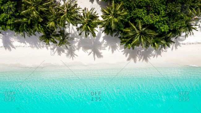 Aerial view of a white, sandy beach with coconut palms and turquoise ocean, Vashafaru, Haa Alif Atol, Maldives.