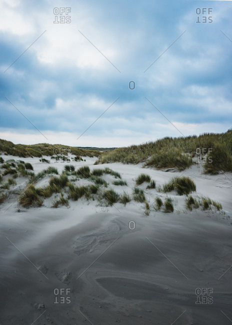 Aerial view of dunes on the island Terschelling, Friesland, The Netherlands.