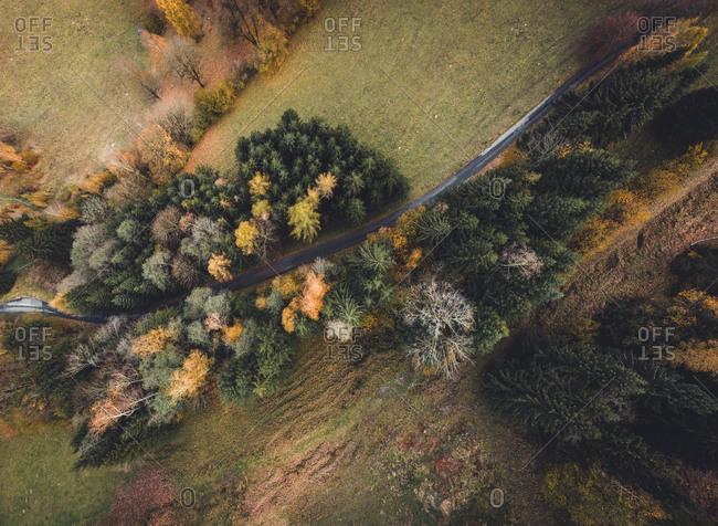 Aerial view of road winding through trees at Kaprun, Austria.