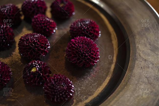 Dark purple dahlia heads on handmade plate