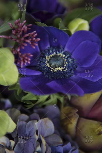 Close up of a floral arrangement with purple flowers