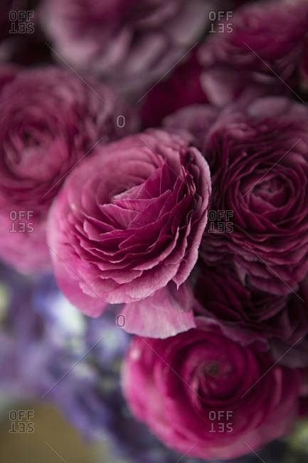 Close up of a beautiful pink floral arrangement