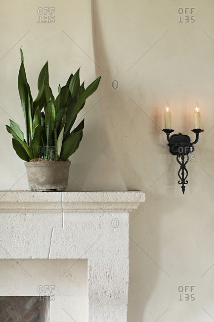 Potted plant on top of fireplace mantel beside antique wall sconce