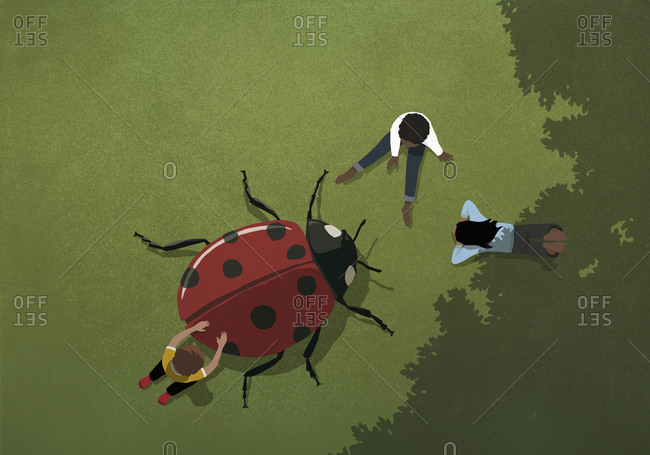 Kids playing with large ladybug in grass