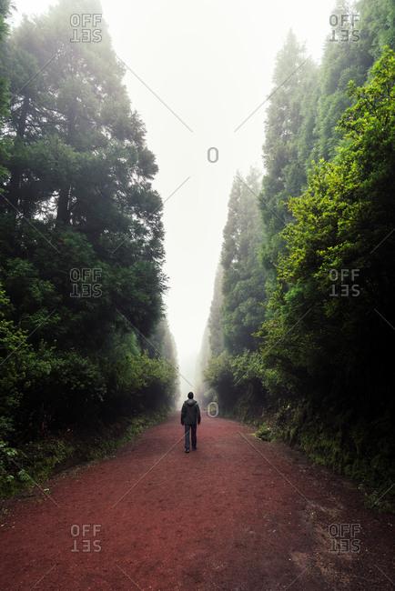 Silhouette of a man walking through a foggy path