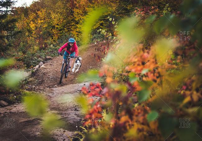 Female mountain-biking with dog running behind during foliage season