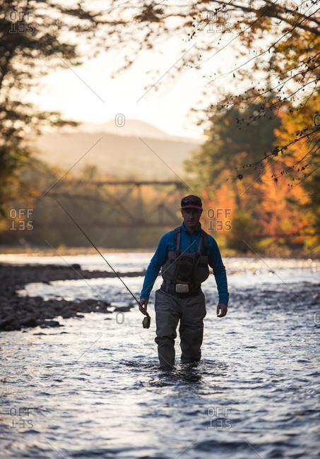 Fly-fisherman wading through river at sunset during foliage season