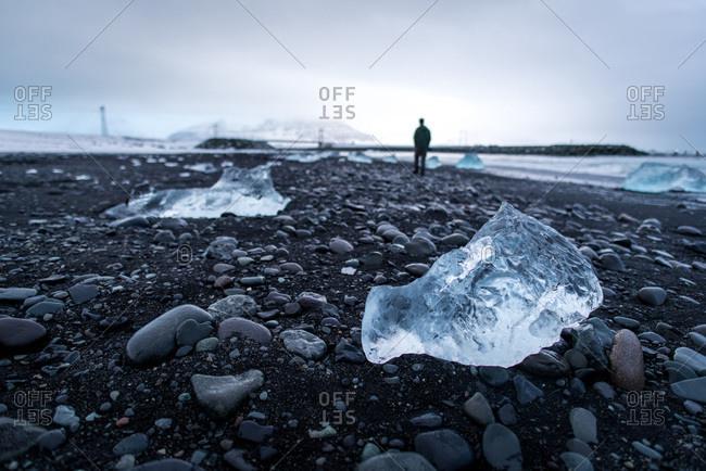 An iceberg chunk on black sand Diamond Beach in Iceland during winter