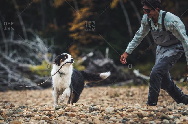 Fisherman chasing an Australian shepherd with a stick on rocky shore