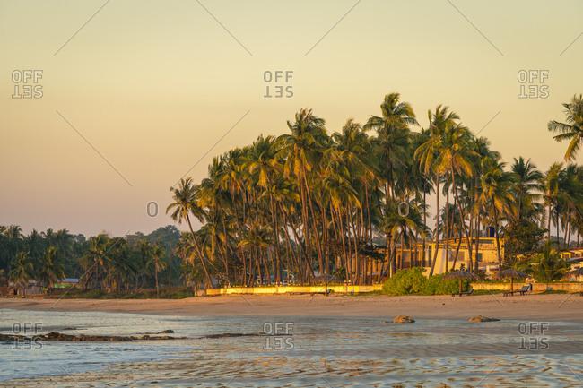 Palm trees at beach against sky during sunset, Chaung Tha Beach, Pathein, Myanmar