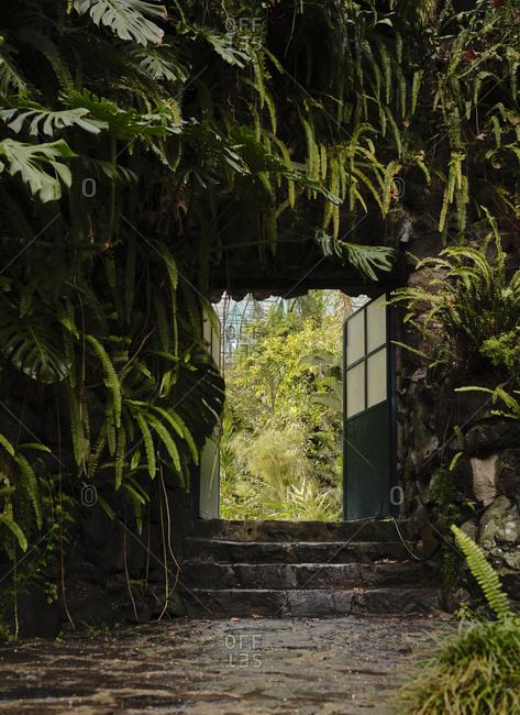 Doorway at Estufa Fria Botanic Gardens