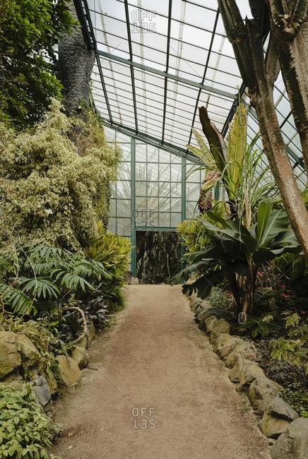 Greenhouse in Estufa Fria Botanic Gardens