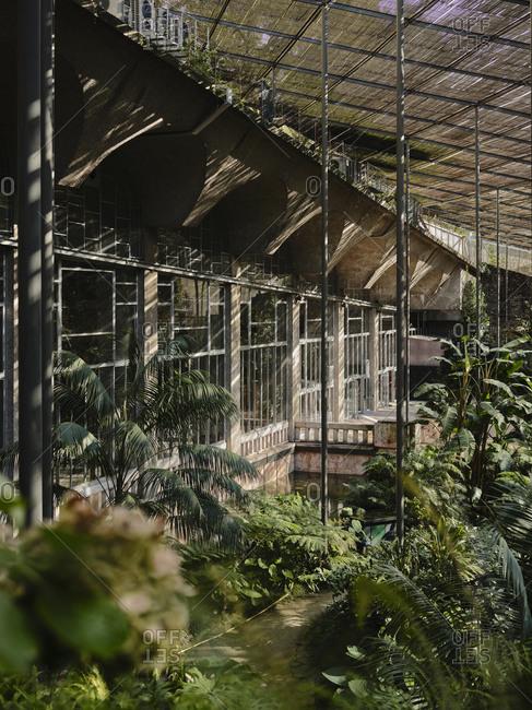 Architecture shot at Estufa Fria Botanic Gardens