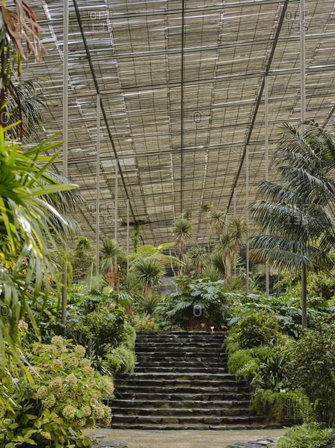 Steps at Estufa Fria Botanic Gardens