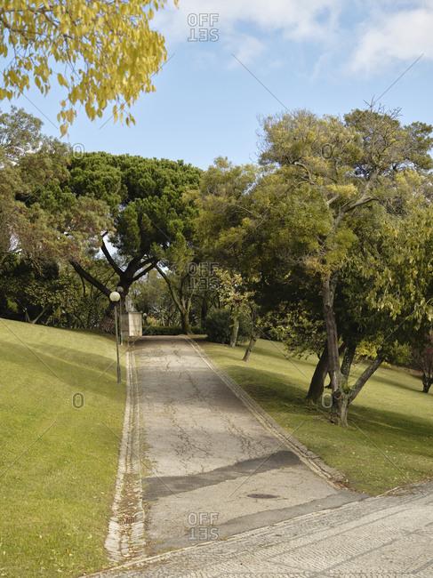 Tree lined road in Parque Eduardo VII