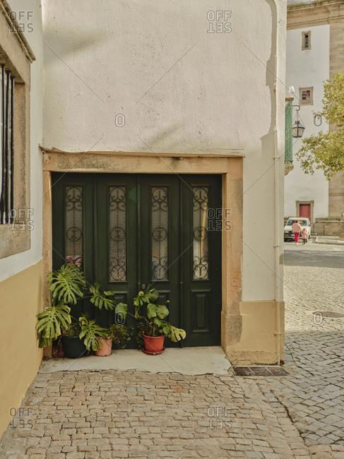 Potted plants against green doors in Castelo De Vide