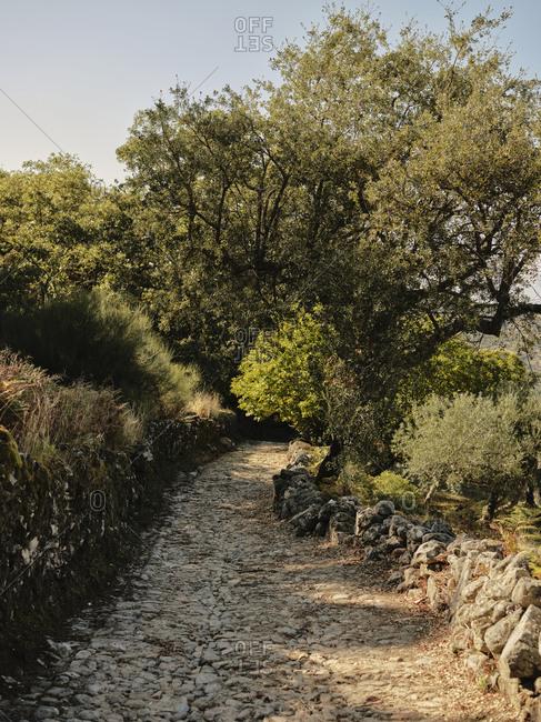 Old roman road in between Marvao and Castelo De Vide
