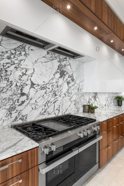 Kitchen Detail in New Contemporary Style Luxury Home