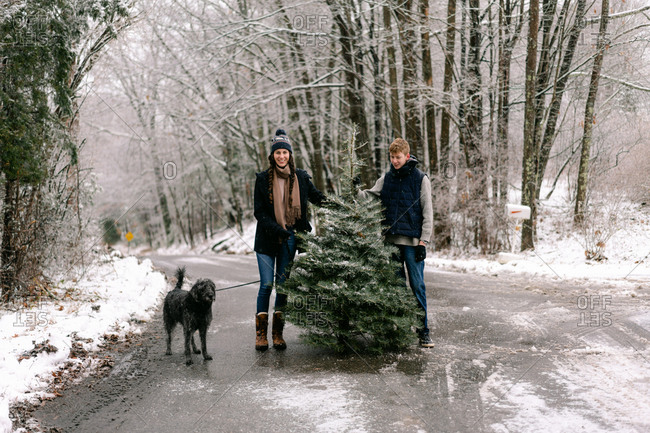 young woman, young man and their dog at Christmas tree  farm