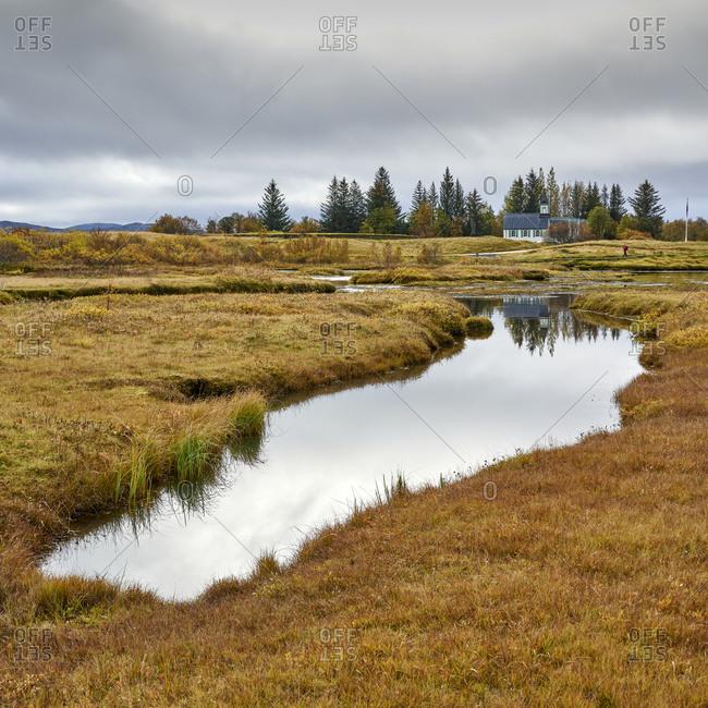 Small lake in grassy field in autumn