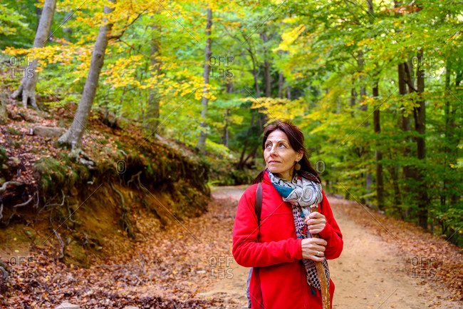 Hiker woman with scarf holding a pole into forest while looking away