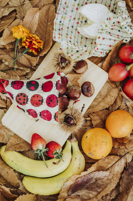 A still life of fruits and cheese in the nature