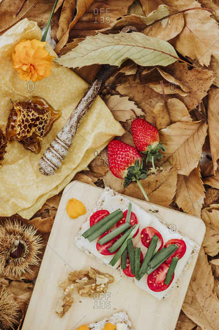 A still life brunch in the nature