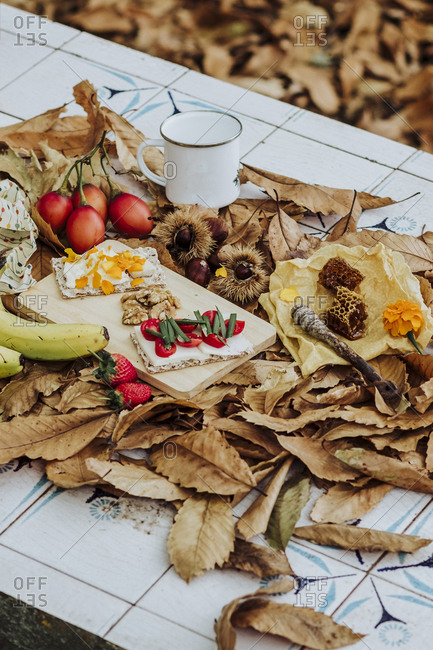 A still life of fruits, honey and cheese in the nature