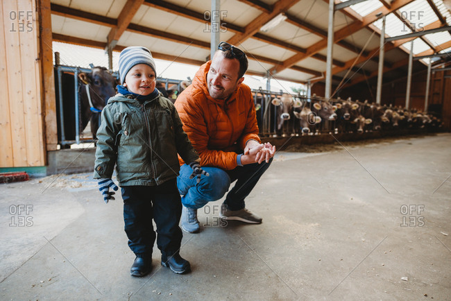 Father and son smiling in barn with cows behind during winter