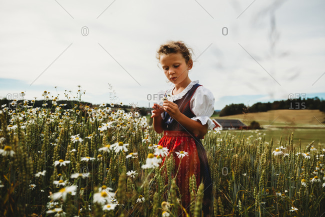 Beautiful girl collecting daises at field in Norway wearing dress