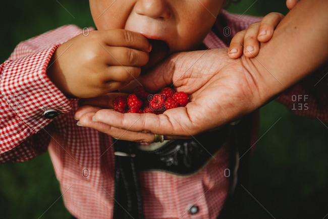 Child eating raspberries from parent's hand at farm wearing Lederhosen