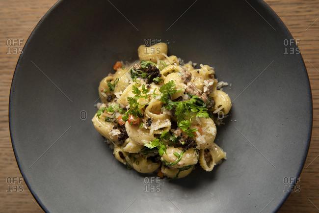 Lumache pasta with short rib and black truffle