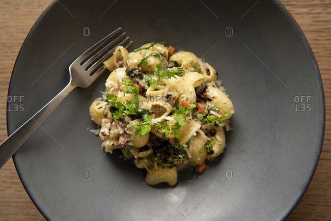 Lumache pasta with short rib and black truffle on plate with fork