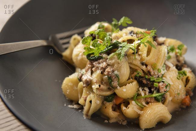 Close up of lumache pasta with short rib and black truffle