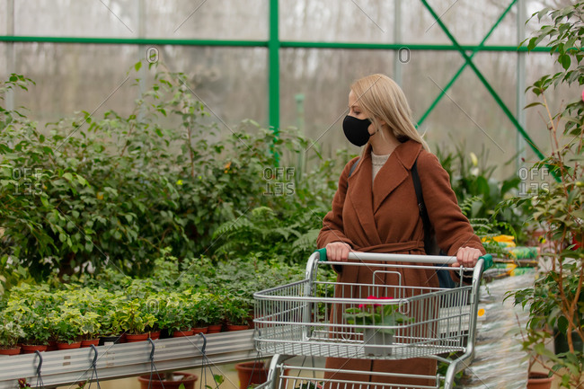 Blonde woman in face mask and coat chooses red flowers in a garden store
