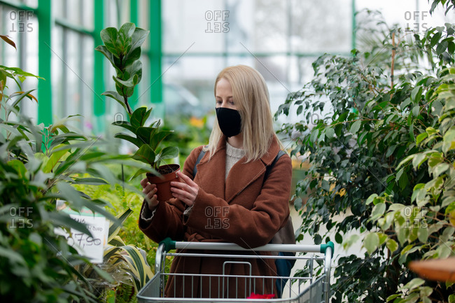Blonde woman in face mask and coat examines green plant