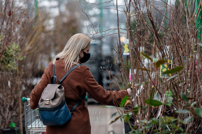 Blonde woman in face mask and coat chooses trees in a garden store