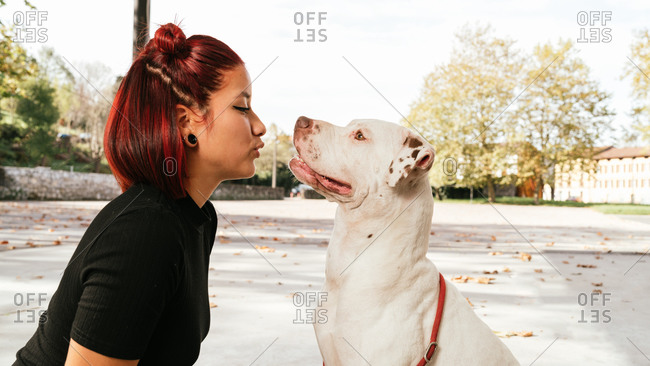 Young Asian female owner kissing obedient purebred American Pit Bull Terrier dog